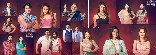 bigg-boss-season-12-contestants