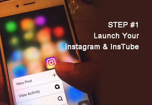 Instagram Video Download: The Definitive Guide (2019)- InsTube